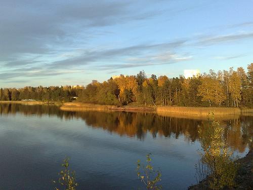 Sunny autumn colours